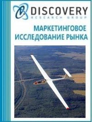 Анализ рынка аппаратов безмоторных летательных в России