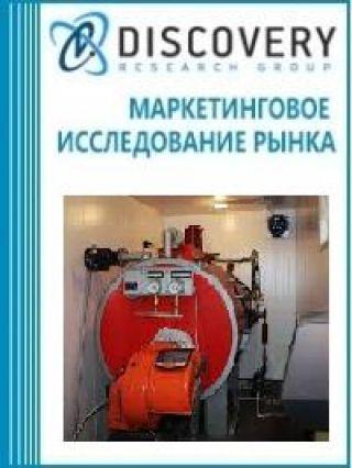 Анализ рынка аппаратов водогрейных в России