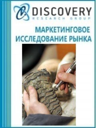 Анализ рынка работ археологических в России