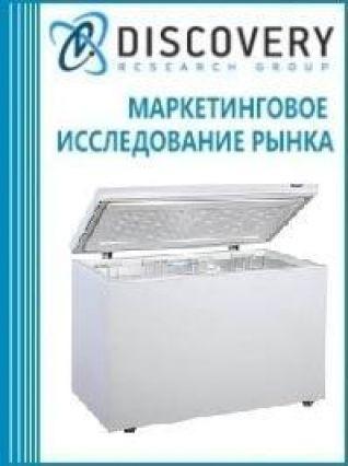 Анализ рынка автоматов морозильников в России