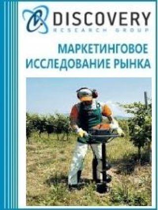 Анализ рынка бензобуров в России
