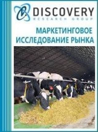 Анализ рынка бойней животных в России