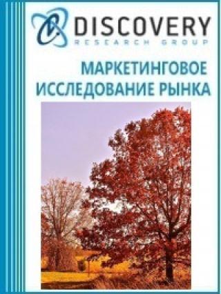 Маркетинговое исследование - Анализ рынка быстрорастущих деревьев в России