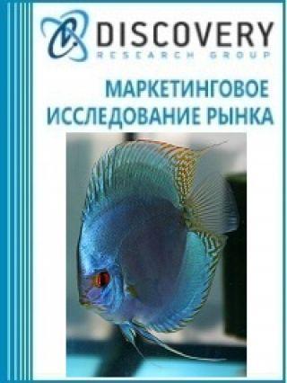 Анализ рынка декоративных живых рыбок в России