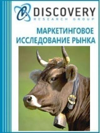 Анализ рынка домашнего крупного рогатого скота в России