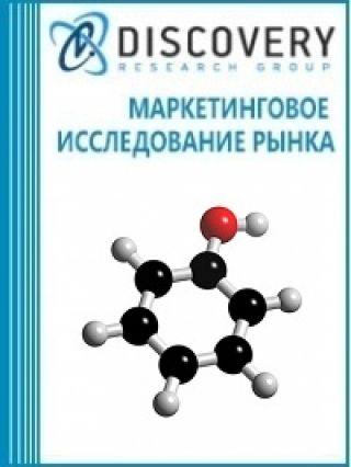 Анализ рынка гидроксибензола в России