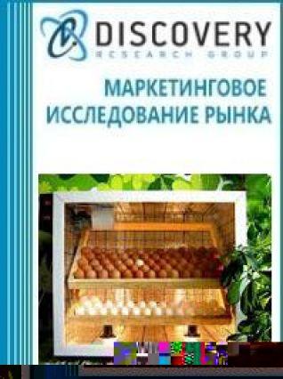 Маркетинговое исследование - Анализ рынка инкубаторов и брудеров для птицеводства в России