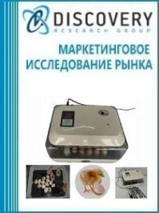 Анализ рынка инкубаторов цифровых в России