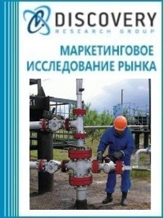 Маркетинговое исследование - Анализ рынка инженерно-геофизических работ в России