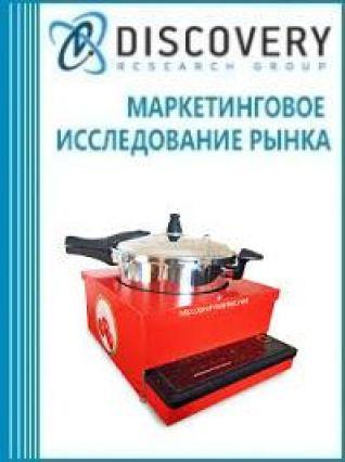 Анализ рынка карамелизаторов в России