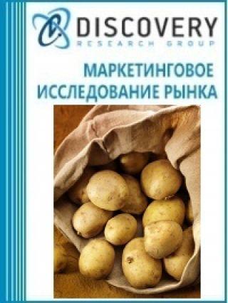 Анализ рынка картофеля в России (с предоставлением базы импортно-экспортных операций)