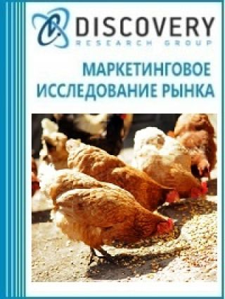 Маркетинговое исследование - Анализ рынка комбикормов в России