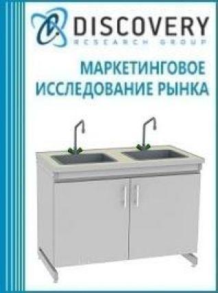 Маркетинговое исследование - Анализ рынка лабораторных моек в России