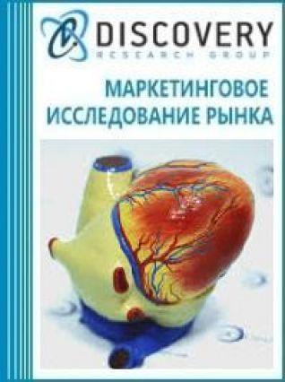 Анализ рынка медицинские приборы и модели, предназначенных для демонстрационных целей в России