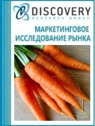 Маркетинговое исследование - Анализ рынка моркови в России