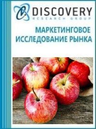 Анализ рынка оборудования для чистки яблок и удаления сердцевины в России