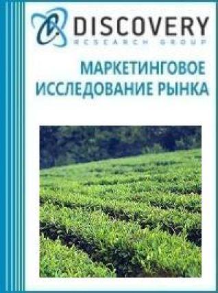 Маркетинговое исследование - Анализ рынка оборудования для формовки чайного листа в России