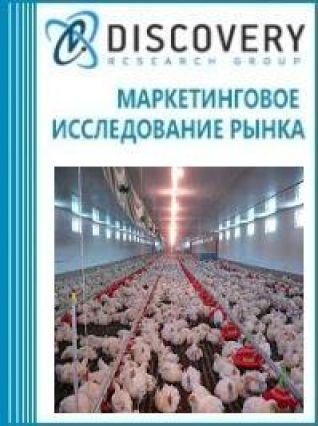 Анализ рынка оборудования для напольного содержания птиц в России