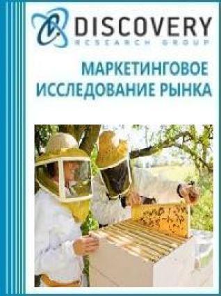 Маркетинговое исследование - Анализ рынка оборудования для пчеловодства (медогонок, ульев, рамок, дымарей, воскопрессов, воскотопок) в России