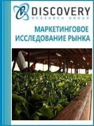 Маркетинговое исследование - Анализ рынка оборудования для завяливания, ферментации, сушки и сортировки чая в России