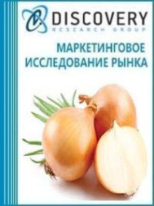 Анализ рынка оборудования переработки и чистки репчатого лука в России