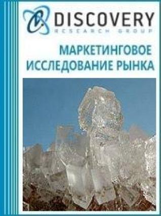 Маркетинговое исследование - Анализ рынка хлорида натрия остаточного в России