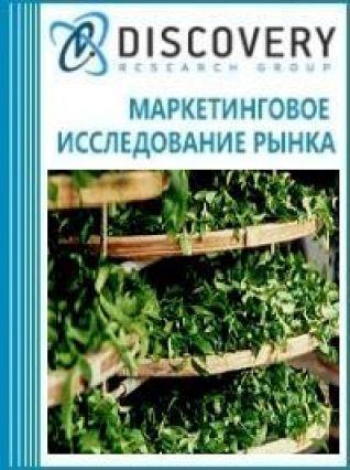 Анализ рынка прессов формовочных для чая в России
