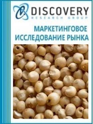 Анализ рынка сахарного сорго в России