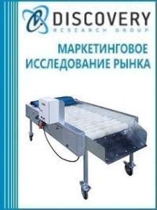 Маркетинговое исследование - Анализ рынка щеточных очистителей в России