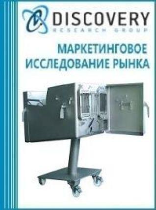 Маркетинговое исследование - Анализ рынка шпигорезок в России