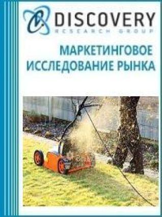 Маркетинговое исследование - Анализ рынка скарификаторов (электрических и бензиновых) в России