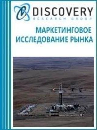 Маркетинговое исследование - Анализ рынка сланцевой нефти в России