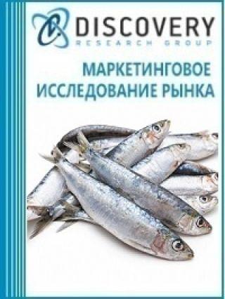Анализ рынка соленой рыбы сардины в России