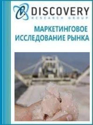 Маркетинговое исследование - Анализ рынка соли денатурированной (промышленной) в России