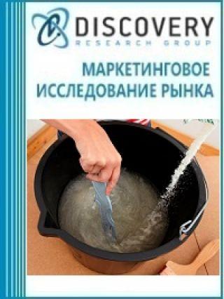 Анализ рынка сухих латексных редиспергируемых порошков и их исходных дисперсий в России