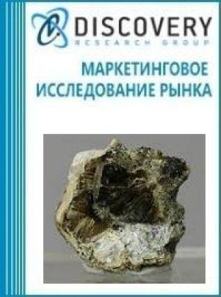 Анализ рынка тайниолитов в России