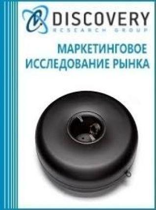 Анализ рынка тороидальных внутренних баллонов в России