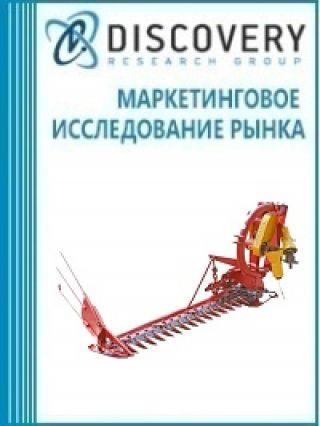 Маркетинговое исследование - Анализ рынка тракторных косилок в России