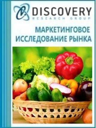 Маркетинговое исследование - Анализ рынка услуг по хранению пищевых продуктов в России
