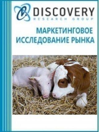 Маркетинговое исследование - Анализ рынка витаминов для животноводства в России