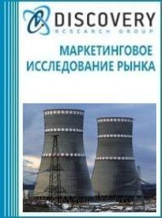 Анализ рынка ядерных реакторов (устройств для разделения изотопов, тепловыделяющих элементов твэлов) в России