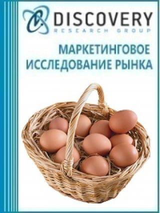 Маркетинговое исследование - Анализ рынка яиц в скорлупе в России