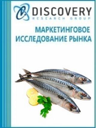 Маркетинговое исследование - Анализ рынка замороженного филе из рыбы скумбрии в России