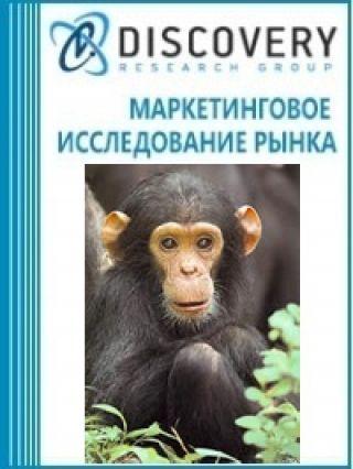 Анализ рынка замороженного мяса приматов в России