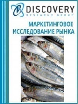 Анализ рынка замороженной сардины в России