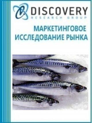 Анализ рынка замороженной скумбрии в России
