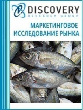 Анализ рынка замороженной ставриды в России