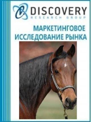 Анализ рынка живых лошадей в России