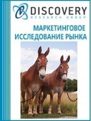 Анализ рынка живых мулов в России