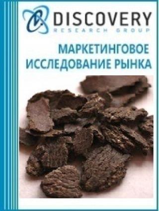 Анализ рынка жмыха и шрота в России